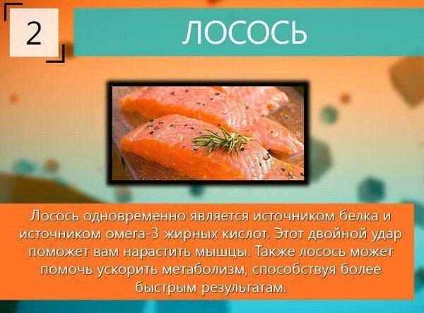10-samyh-luchshih-produktov-dlya-rosta-myshc-3-4053672