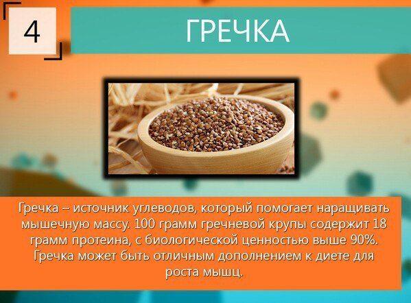 10-samyh-luchshih-produktov-dlya-rosta-myshc-5-7363997