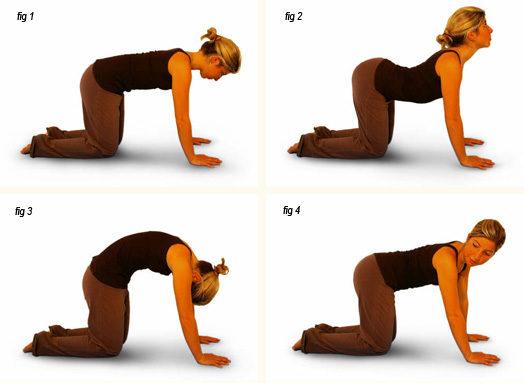 8-poz-yogi-ot-boley-v-spine-dlya-kazhdogo-dnya-7-5084047