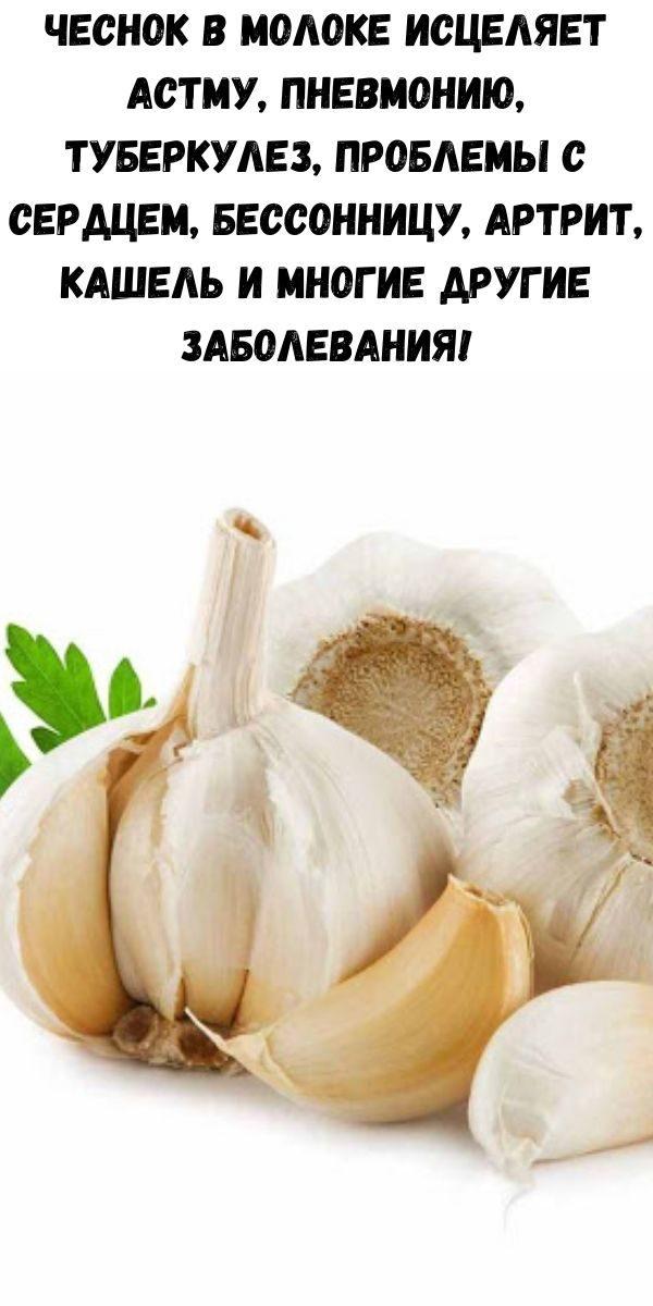 chesnok-v-moloke-iscelyaet-astmu-pnevmoniyu-tuberkulez-problemy-s-serdcem-bessonnicu-artrit-kashel-i-mnogie-drugie-zabolevaniya-2-5053179