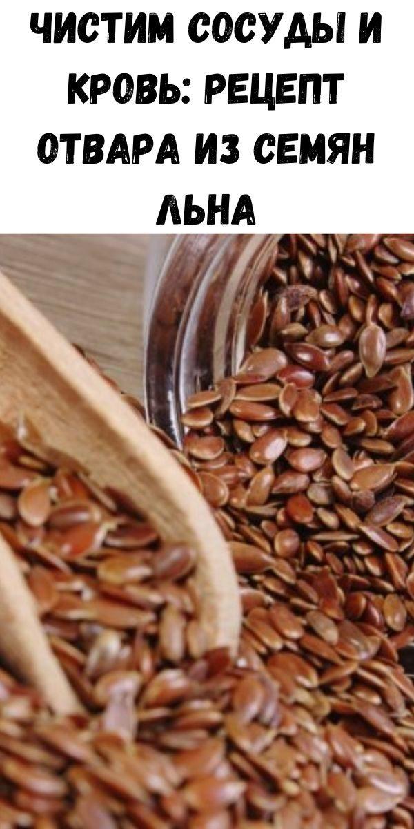 chistim-sosudy-i-krov-recept-otvara-iz-semyan-l-na-3-8937009