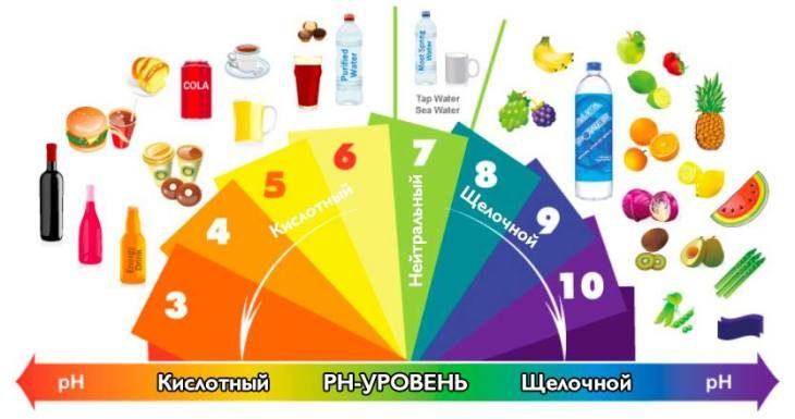 detali-schelochnoy-diety-kotoruyu-dolzhen-znat-kazhdyy-kto-hochet-obezopasit-sebya-ot-raka-1-5978375