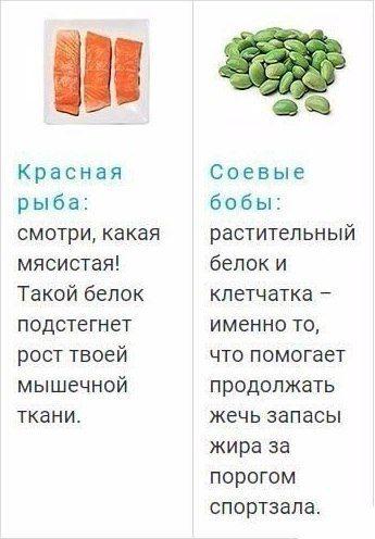 dlya-teh-kto-zanimaetsya-sportom-ideal-nye-produkty-5-5965234