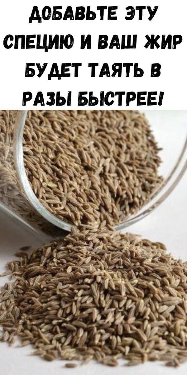 dobav-te-etu-speciyu-i-vash-zhir-budet-tayat-v-razy-bystree-2-2774642