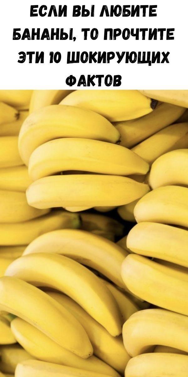 esli-vy-lyubite-banany-to-prochtite-eti-10-shokiruyuschih-faktov-2-1117281