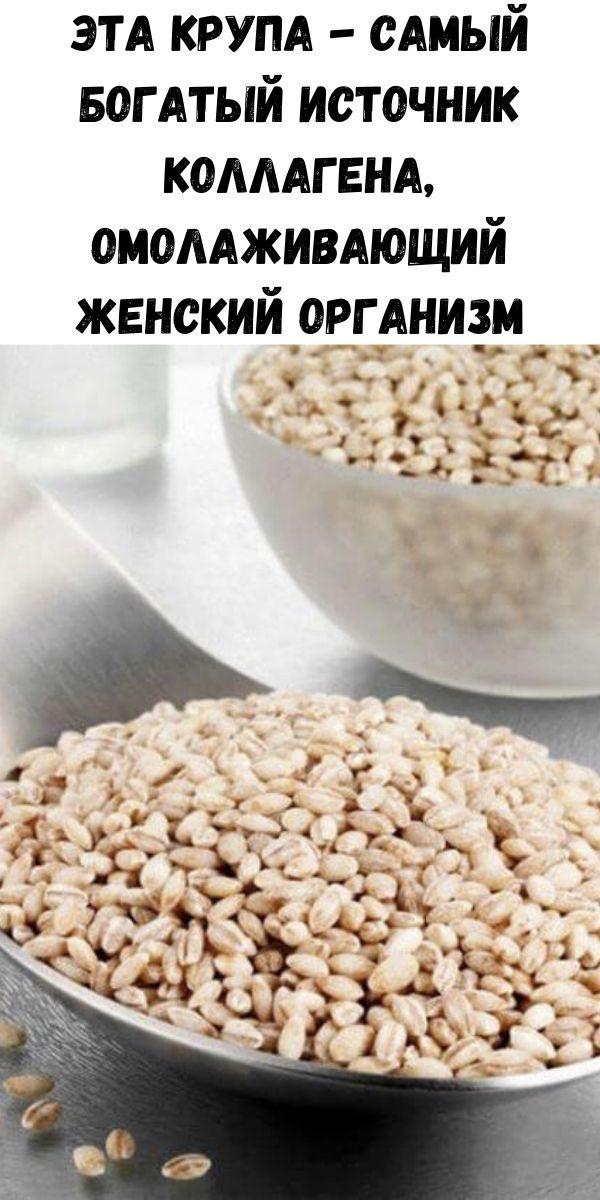 eta-krupa-samyy-bogatyy-istochnik-kollagena-omolazhivayuschiy-zhenskiy-organizm-2-8769919