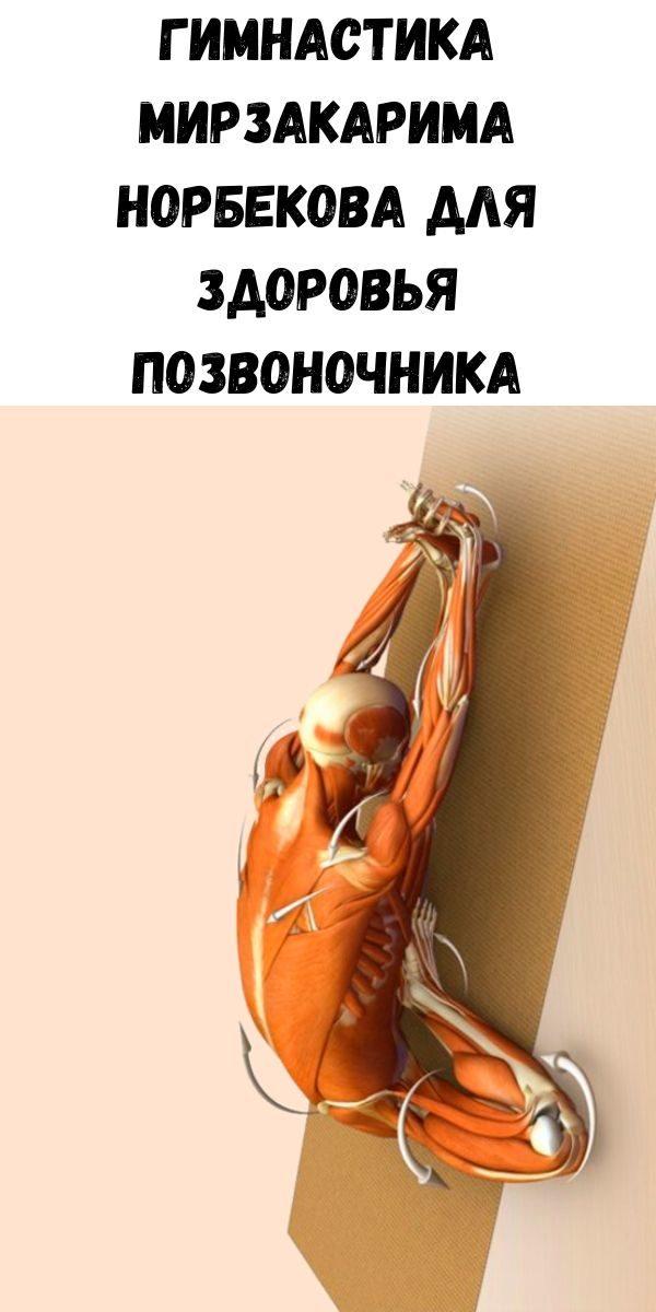 gimnastika-mirzakarima-norbekova-dlya-zdorov-ya-pozvonochnika-2-2721065
