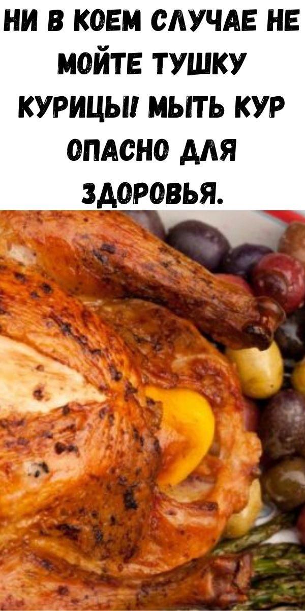 ni-v-koem-sluchae-ne-moyte-tushku-kuricy-myt-kur-opasno-dlya-zdorov-ya-2-7070468