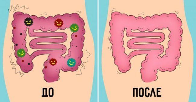ochischenie-organizma-ot-toksinov-syrym-sokom-po-metodu-doktora-uokera-1-9227181