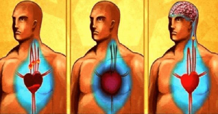 ochistite-arterii-i-predotvratite-serdechnyy-pristup-i-insul-t-s-pomosch-yu-vsego-odnogo-stakana-etogo-moschnogo-napitka-1-5644402