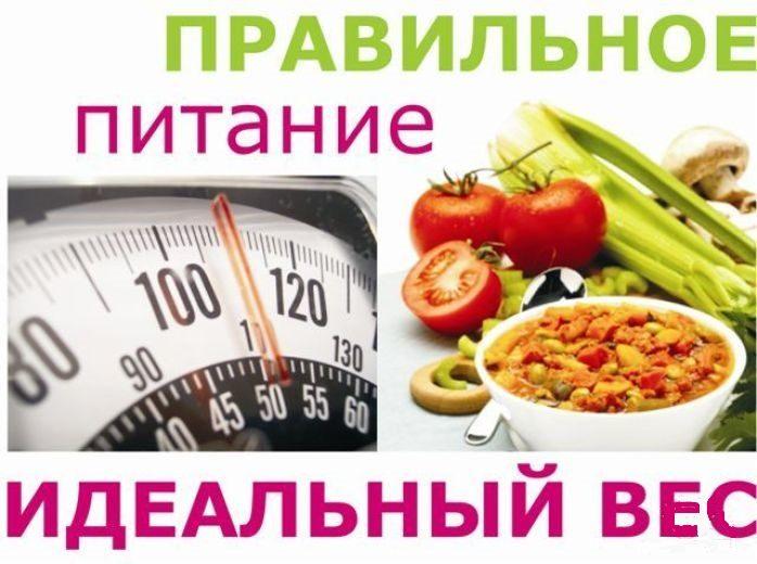 pravil-noe-pitanie-eto-zalog-horoshego-samochuvstviya-i-zdorov-ya-v-celom-1-5552317