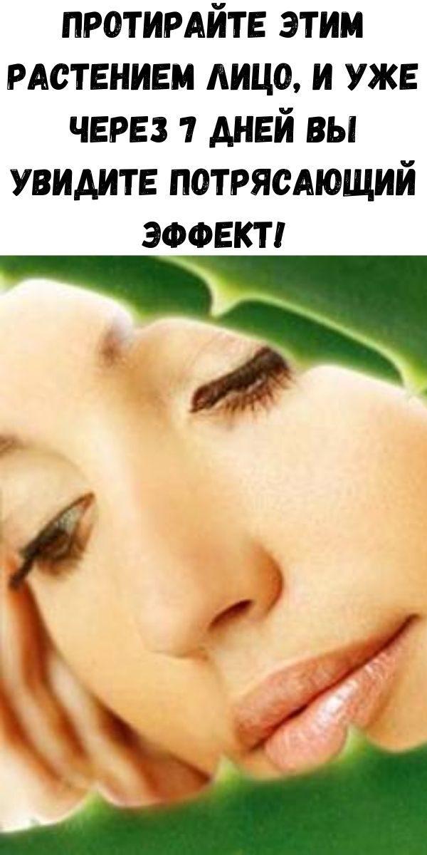 protirayte-etim-rasteniem-lico-i-uzhe-cherez-7-dney-vy-uvidite-potryasayuschiy-effekt-2-4317719
