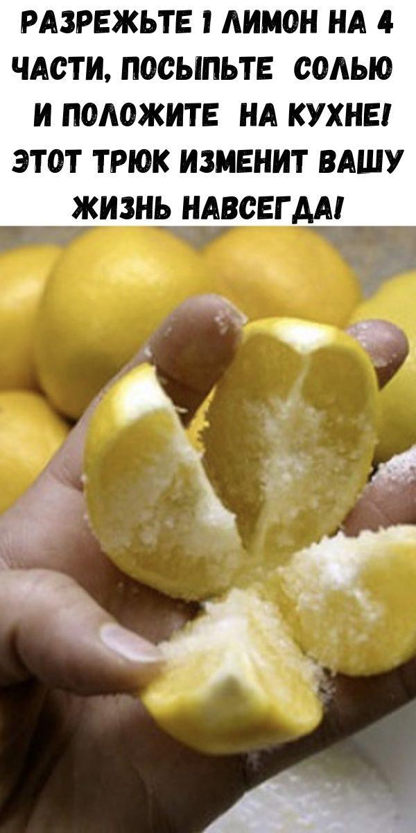 razrezh-te-1-limon-na-4-chasti-posyp-te-sol-yu-i-polozhite-na-kuhne-etot-tryuk-izmenit-vashu-zhizn-navsegda-2-1496646