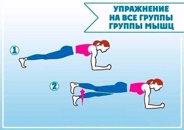 uprazhneniya-dlya-vsego-tela-2-9780166