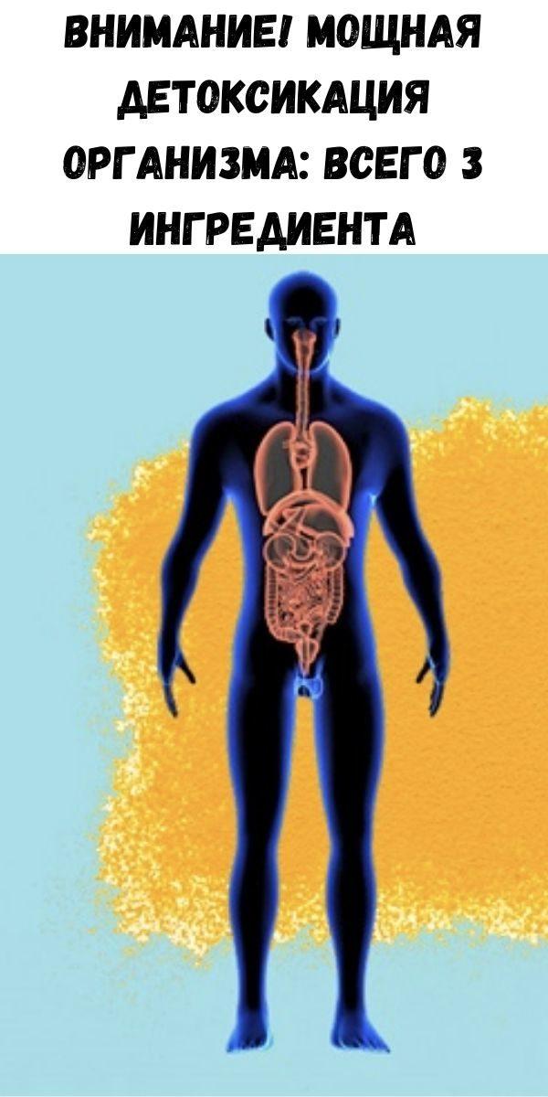 vnimanie-moschnaya-detoksikaciya-organizma-vsego-3-ingredienta-2-2164170