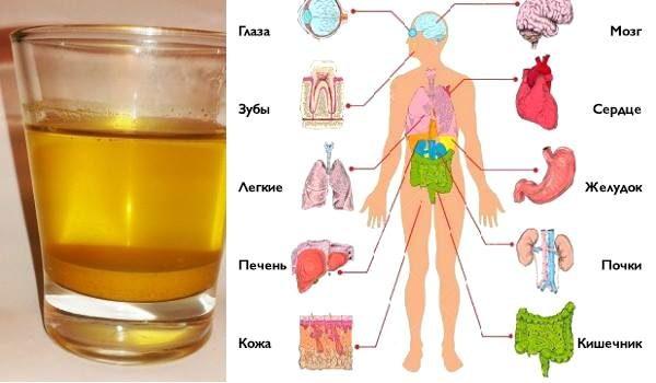 vypivayte-stakan-vody-s-kurkumoy-utrom-i-vot-chto-budet-proishodit-s-vashim-organizmom-1-7265597